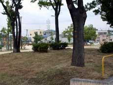 名古屋市天白区の公園